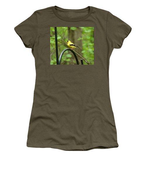 Women's T-Shirt (Junior Cut) featuring the photograph Golden Finch by Rand Herron