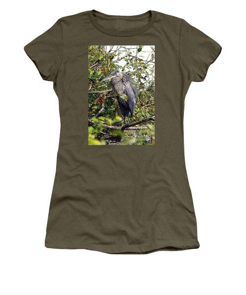 Great Blue Heron In A Tree Women's T-Shirt