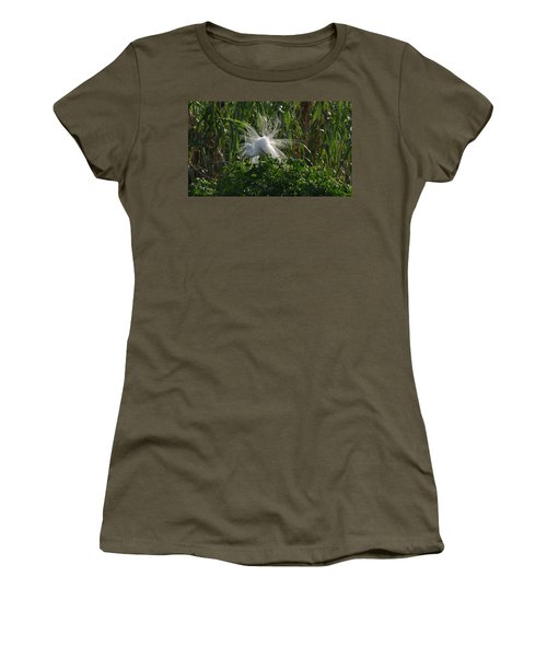 Great Egret Displays Windy Mating Plumage Women's T-Shirt (Athletic Fit)