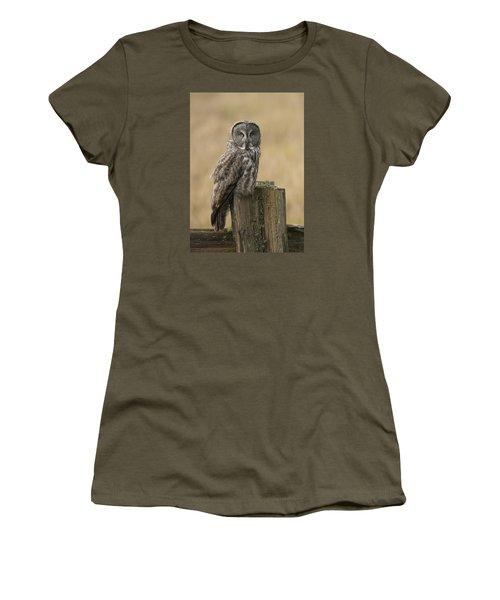 Great Gray Owl Women's T-Shirt (Junior Cut) by Doug Herr