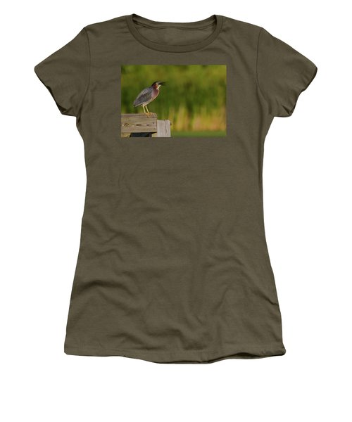 Green Heron Evening Women's T-Shirt (Athletic Fit)