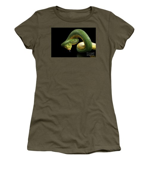 Green Tree Python. Morelia Viridis. Isolated Black Background Women's T-Shirt