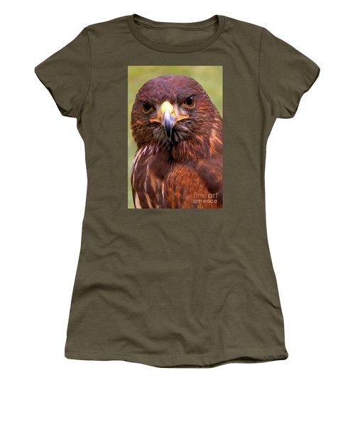 Harris Hawk Portriat Women's T-Shirt (Junior Cut) by Stephen Melia