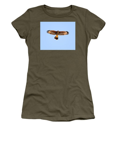 Women's T-Shirt (Athletic Fit) featuring the photograph Harris's Hawk H36 by Mark Myhaver