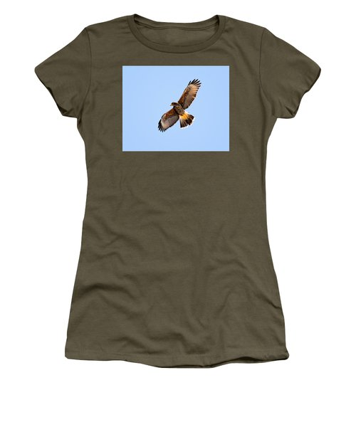 Women's T-Shirt (Athletic Fit) featuring the photograph Harris's Hawk H37 by Mark Myhaver