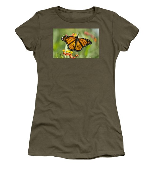 Hawaiian Monarch 3 Women's T-Shirt (Athletic Fit)