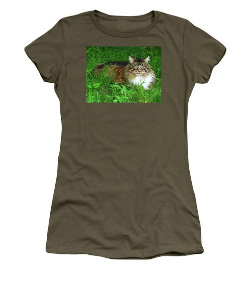Women's T-Shirt (Athletic Fit) featuring the photograph Hercules Maine Coon Elegance by Roger Bester