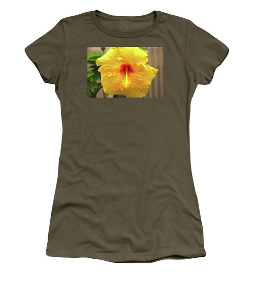 Hibiscus Flower After The Rain Women's T-Shirt (Junior Cut) by Michael Courtney