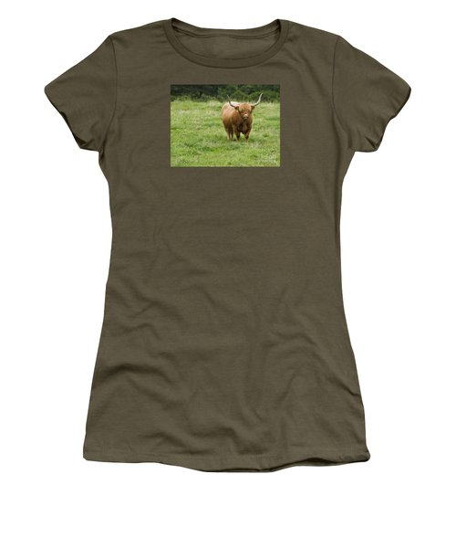 Highland Cattle Women's T-Shirt (Junior Cut) by Diane Diederich