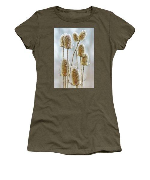 Hoar Frost - Wild Teasel Women's T-Shirt (Junior Cut) by Nikolyn McDonald
