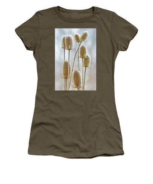 Hoar Frost - Wild Teasel Women's T-Shirt
