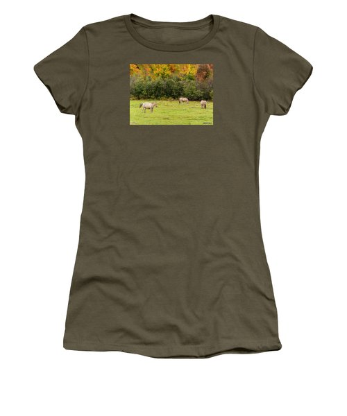Horses Enjoying A Beautiful Autumn Day Women's T-Shirt (Junior Cut) by Ken Morris