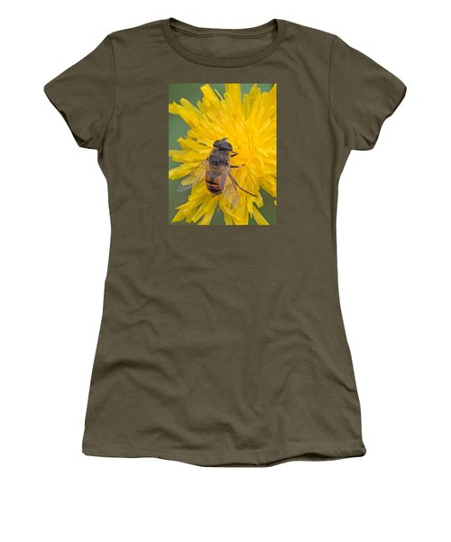 Hover Fly On Sow Thistle Women's T-Shirt (Athletic Fit)
