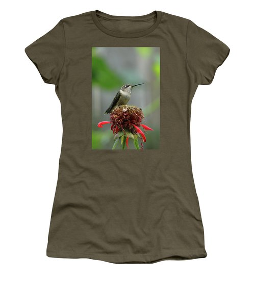 Humming Bird Atop Bee Balm Women's T-Shirt (Athletic Fit)