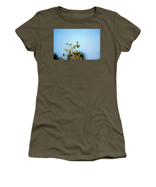 Women's T-Shirt (Junior Cut) featuring the photograph Humming Bird On A Branch by Micah May