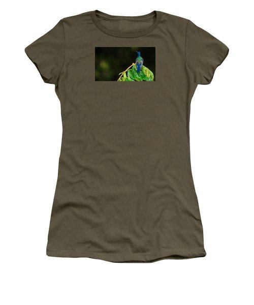 Hummingbird Women's T-Shirt (Junior Cut) by Daniel Precht
