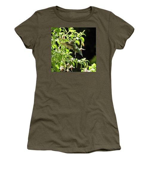 Hummingbird Feeding Women's T-Shirt (Junior Cut) by Brian Chase