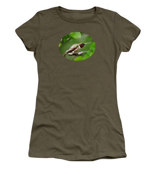 Hummingbird Hiding In Tree Women's T-Shirt (Athletic Fit)