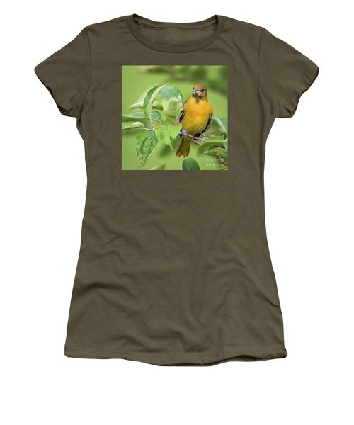 Immature Baltimore Oriole  Women's T-Shirt