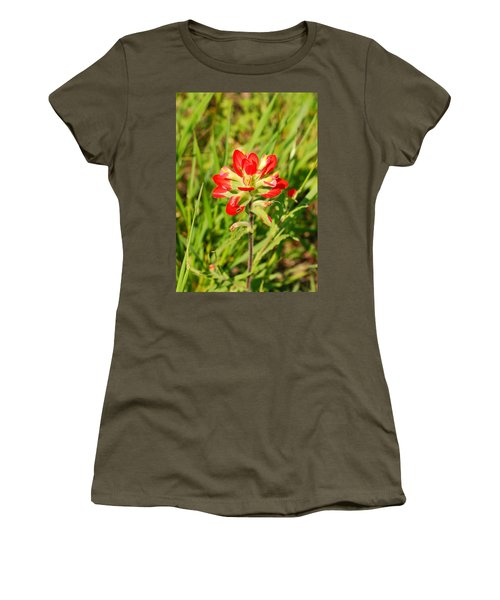 Indian Paintbrush Close Up Women's T-Shirt (Athletic Fit)