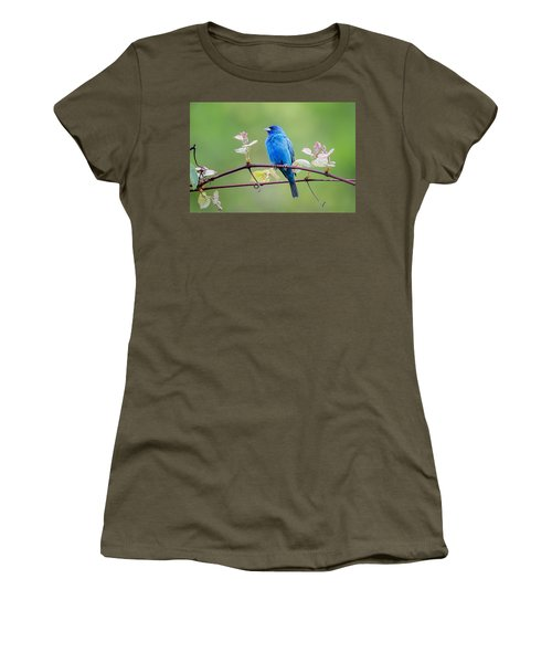 Indigo Bunting Perched Women's T-Shirt (Junior Cut) by Bill Wakeley