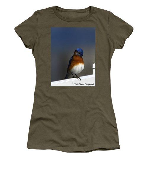 Inquisitive Bluebird Women's T-Shirt