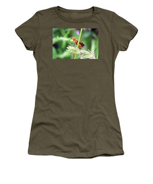 Insect Women's T-Shirt