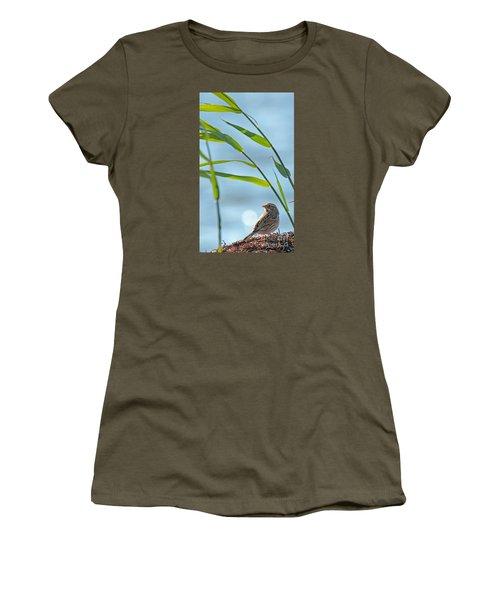 Ipswich Sparrow Women's T-Shirt