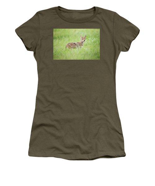 Juvenile Coyote Women's T-Shirt