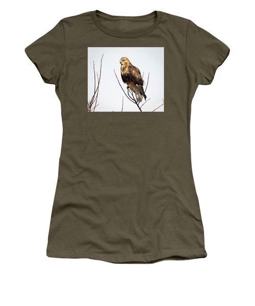 Juvenile Rough-legged Hawk  Women's T-Shirt (Athletic Fit)