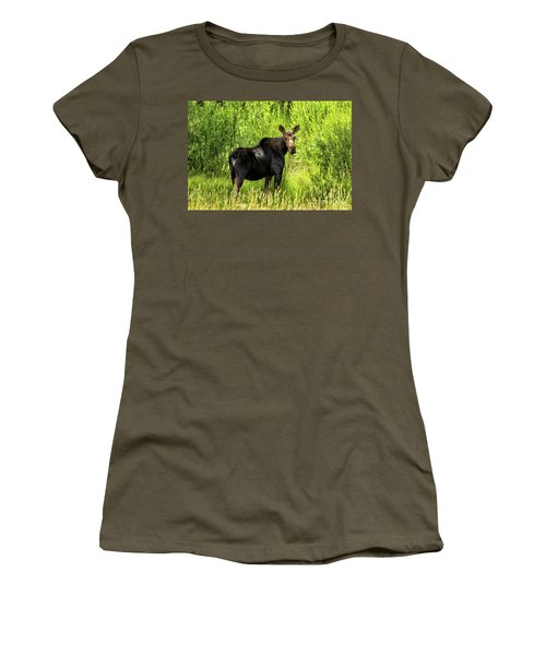 Keep Your Distance Wildlife Art By Kaylyn Franks Women's T-Shirt