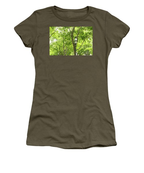 Lanterns Among The Trees Women's T-Shirt
