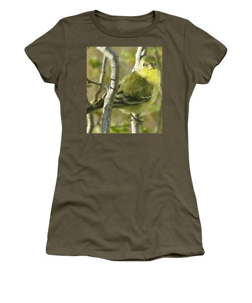 Lesser Goldfinch 1 Women's T-Shirt (Athletic Fit)
