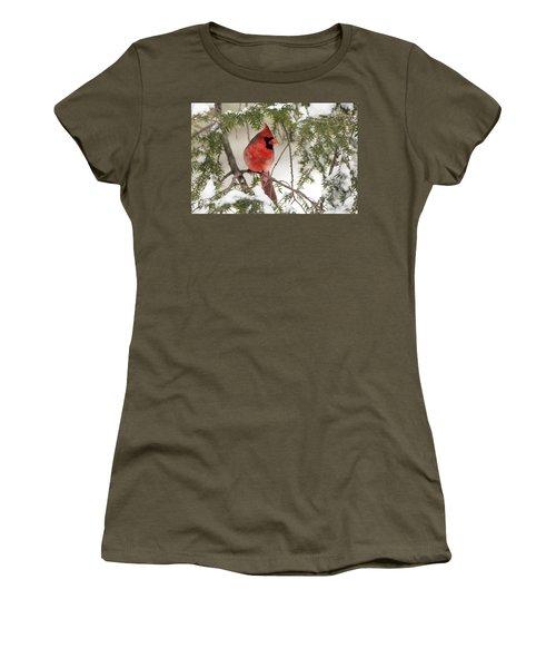 Women's T-Shirt (Junior Cut) featuring the photograph Leucistic Northern Cardinal by Everet Regal