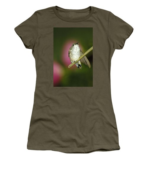 Little Humming Bird Women's T-Shirt (Athletic Fit)