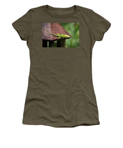 Lizard On Lantern Women's T-Shirt (Junior Cut) by Stephanie Hayes