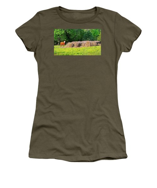 Lone Cow Guard, Smith Mountain Lake Women's T-Shirt (Athletic Fit)