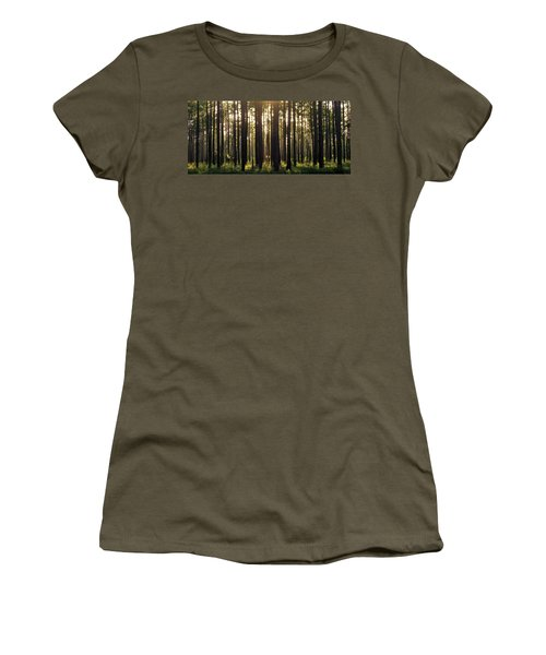 Longleaf Pine Forest Women's T-Shirt (Athletic Fit)