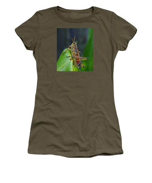 Lubber Grasshopper Women's T-Shirt (Junior Cut) by Richard Rizzo