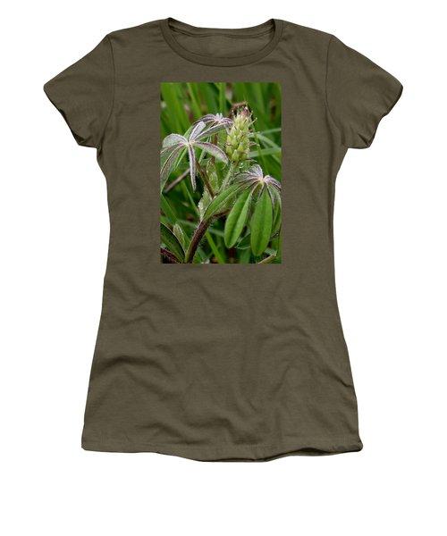Lupine Bud Women's T-Shirt
