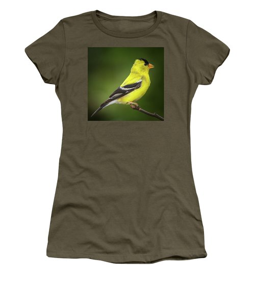 Male American Golden Finch On Twig Women's T-Shirt