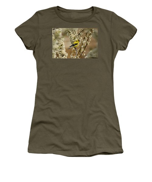 Male Finch In Blossoms Women's T-Shirt (Athletic Fit)