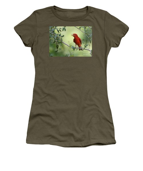 Male Summer Tanager Women's T-Shirt (Athletic Fit)
