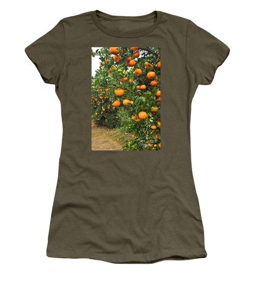 Mandarin Orange Orchard Women's T-Shirt