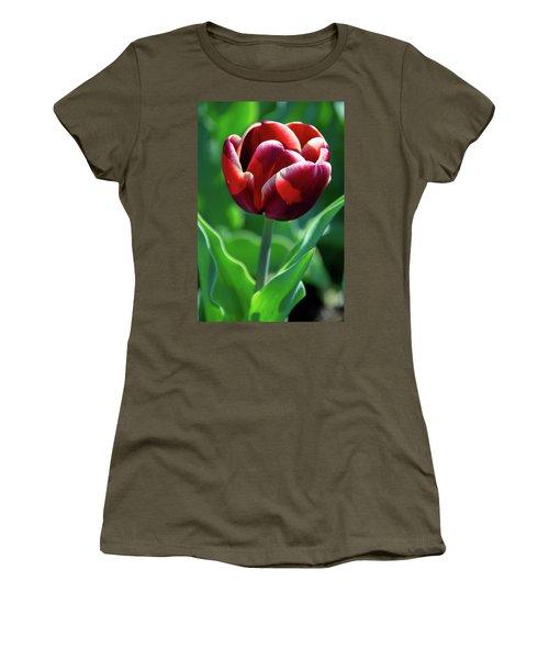 Maroon Tulip Women's T-Shirt