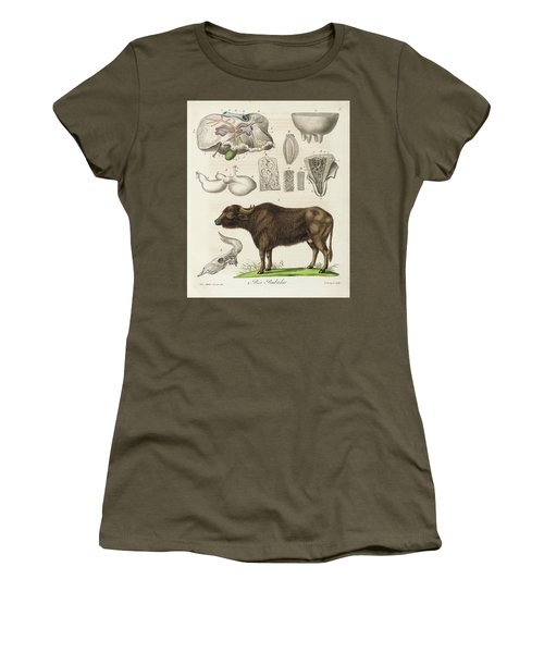 Medical Zoology Or Fair Presentation Women's T-Shirt