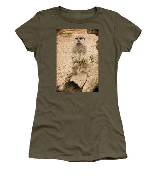 Meerkat Women's T-Shirt (Junior Cut) by Chris Boulton