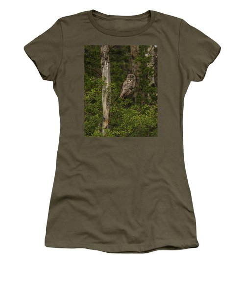 Morning Sun On A Great Grey Women's T-Shirt (Athletic Fit)