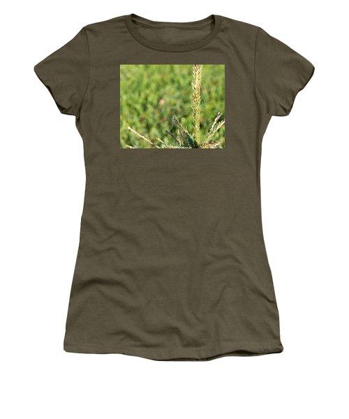 Morning Web #2 Women's T-Shirt