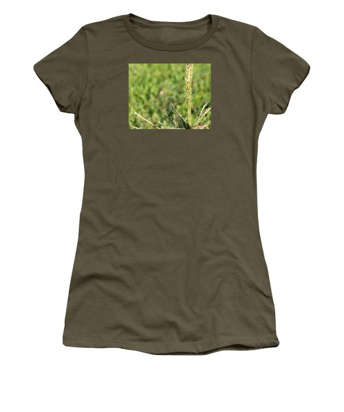 Morning Web #2 Women's T-Shirt (Athletic Fit)